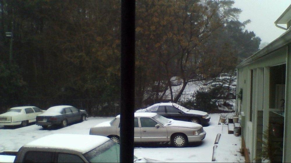 Snowy Day February 12, 2014 XIX